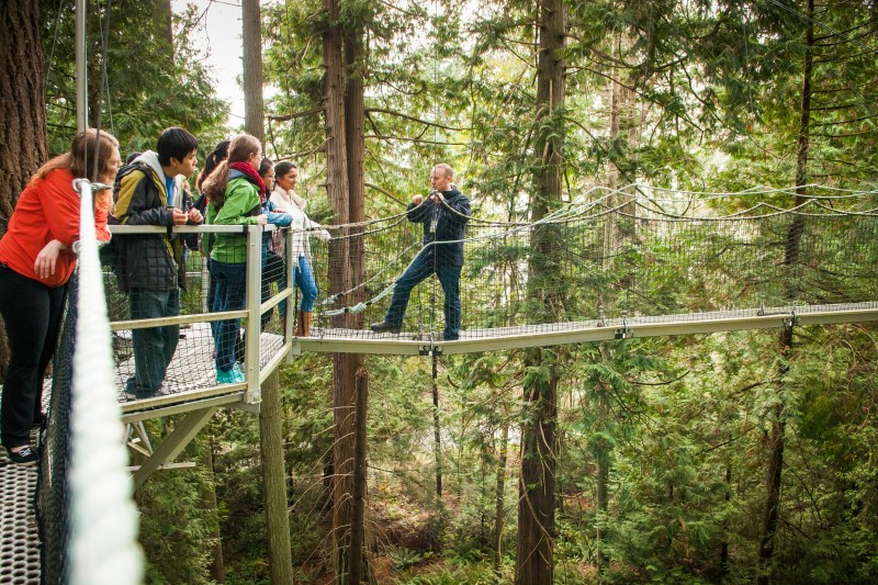 Treetop learning in UBC's Botanical Garden